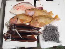 4鮮魚セット2013917