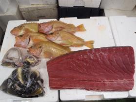8鮮魚セット2013917