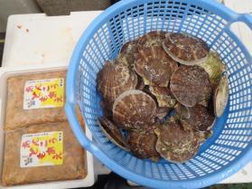 8鮮魚セット2013919
