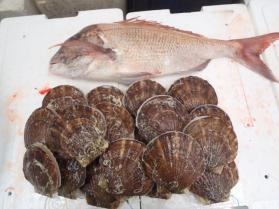7鮮魚セット2013920