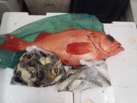 4鮮魚セット2013921