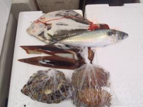 1鮮魚セット2013925