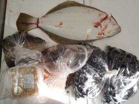 1鮮魚セット2013926