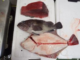 9鮮魚セット2013927