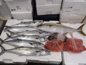 4鮮魚セット20131031