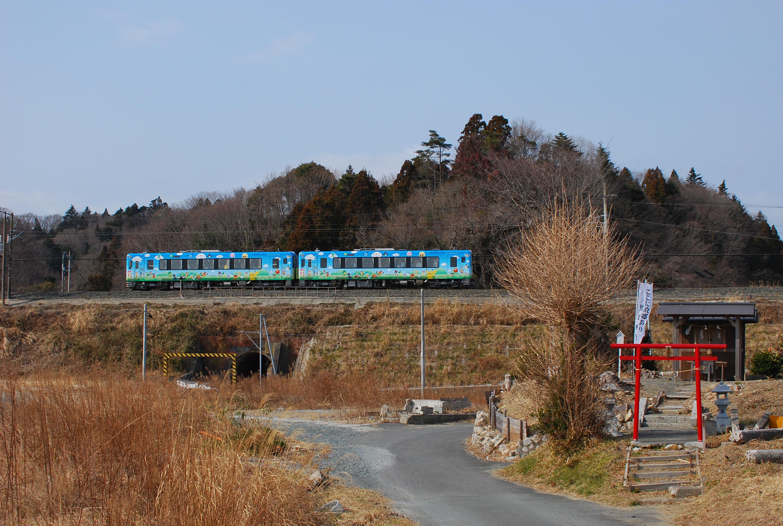 DSC_0746(1).jpg