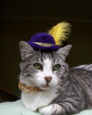 かわいすぎ! ネコの頭にのっける帽子 - ねとらぼ1