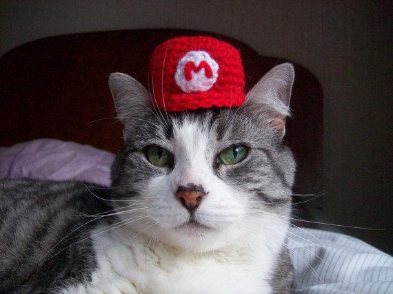 かわいすぎ! ネコの頭にのっける帽子 - ねとらぼ2
