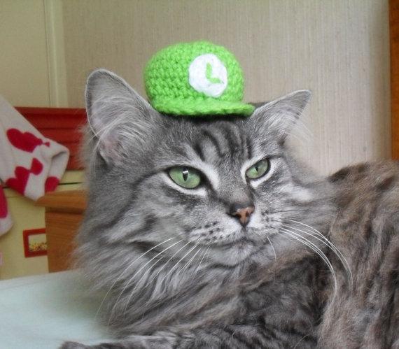 かわいすぎ! ネコの頭にのっける帽子 - ねとらぼ3
