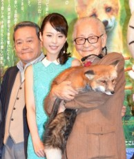 平野綾、本物のキタキツネに感激「子どもが生まれたら絶対に見せたい!」 - 芸能 - 最新ニュース一覧 - 楽天woman