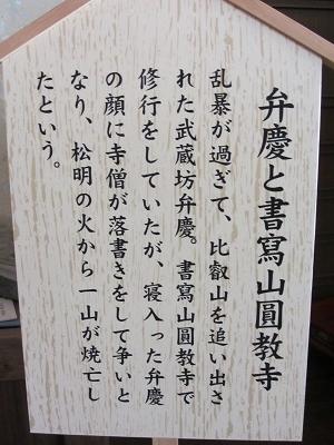 IMG_3031 弁慶