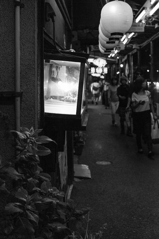 20131026_night_vision-05.jpg