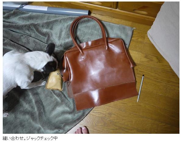 newbag11.jpg
