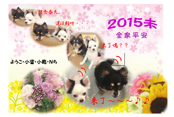 2015blg.jpg