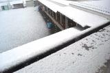 雪 (1)