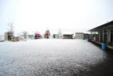 雪 (12)