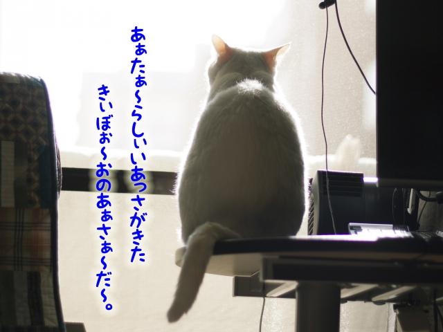 131110_21.jpg