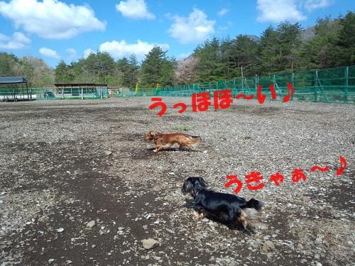DSC_1244.jpg