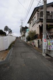 SHININZAKA3.jpg
