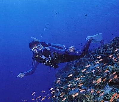s-s-青魚