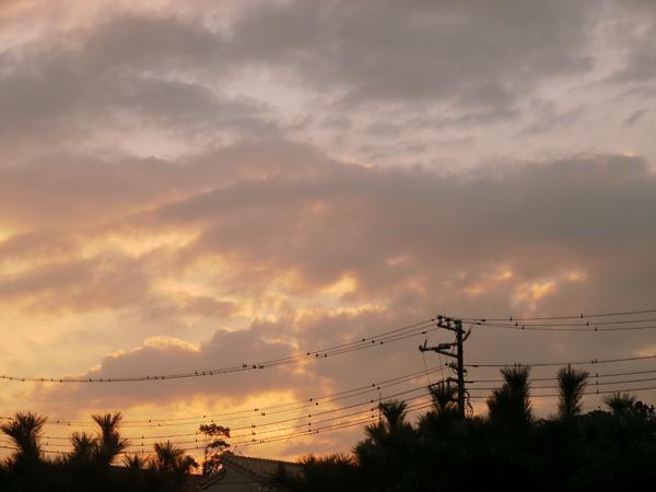 17日の夕焼け