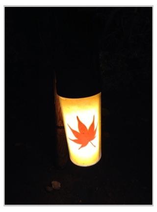 足元を照らす紅葉ライト