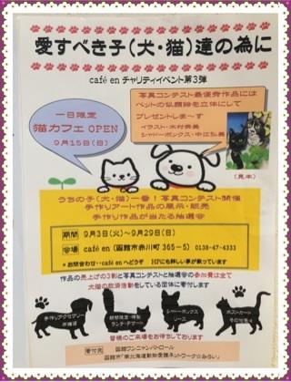 cafe en 犬猫チャリティイベント