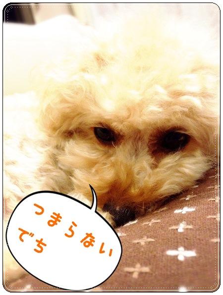 20141011 IMG_5413