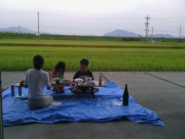 稲穂と金華山がつまみ 20130923