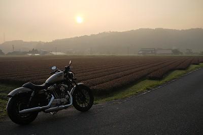 s-6:19朝陽