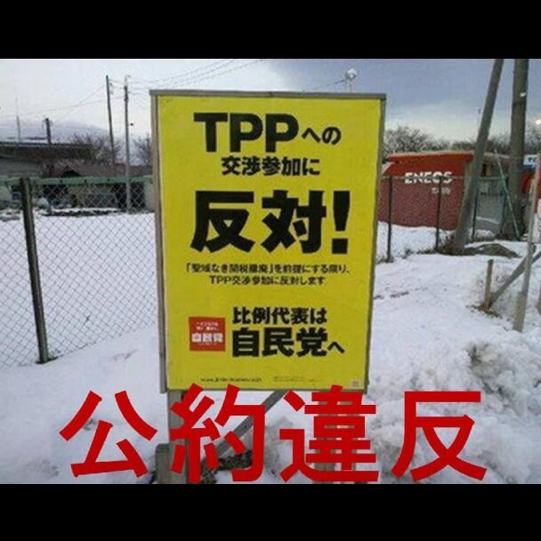 TPP公約違反その2