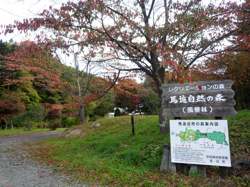 maoi20140928-0966.jpg