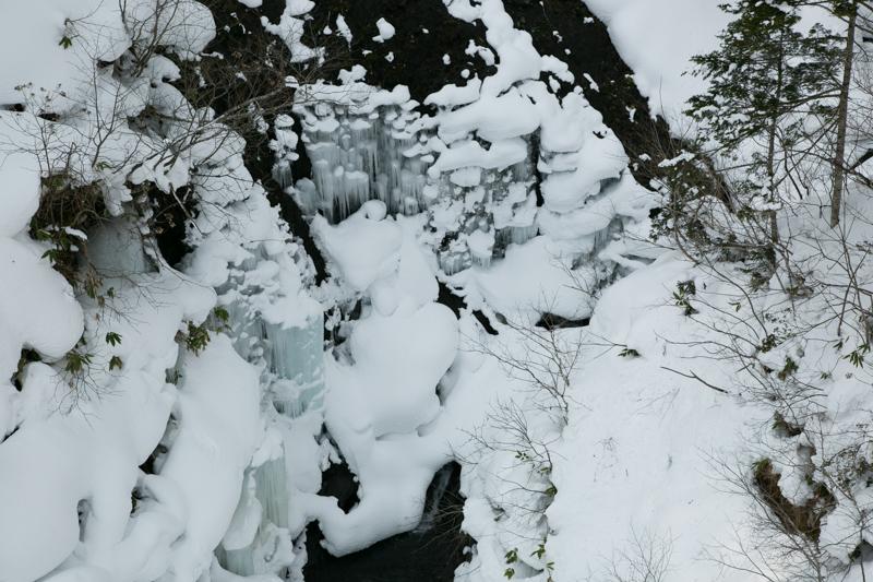 shiraoidake230140125-4403.jpg