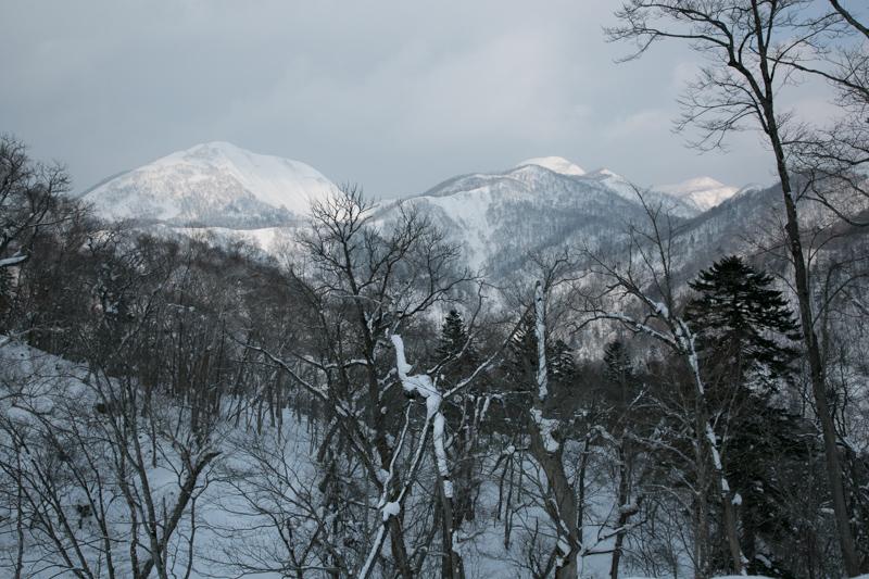 shiraoidake230140125-4410.jpg