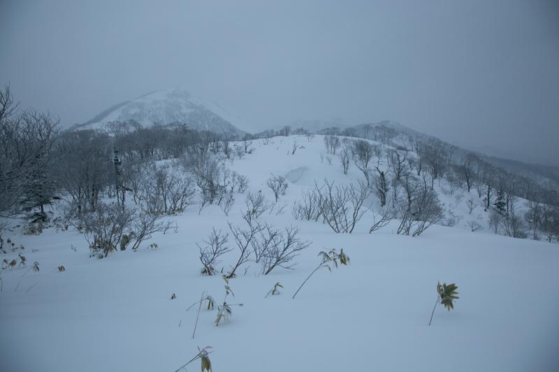 shiraoidake230140125-4452.jpg