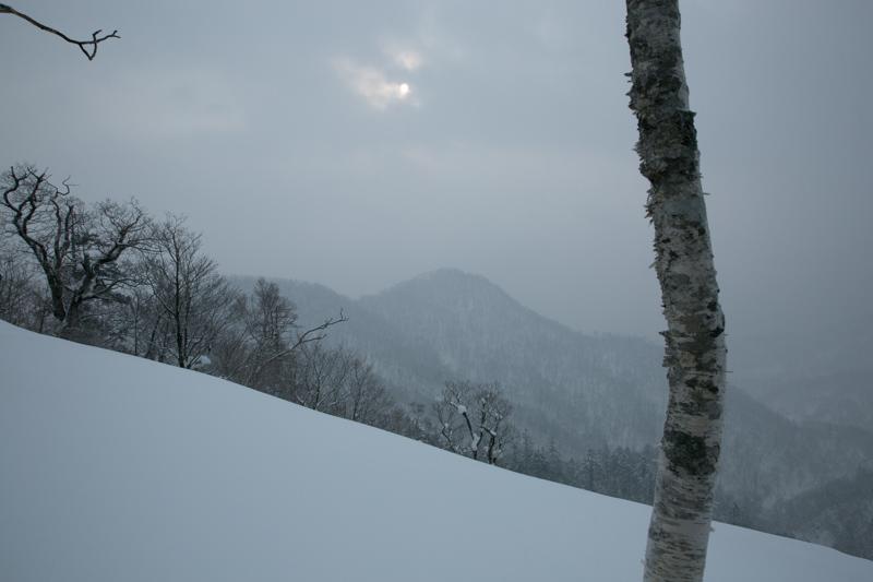 shiraoidake230140125-4456.jpg
