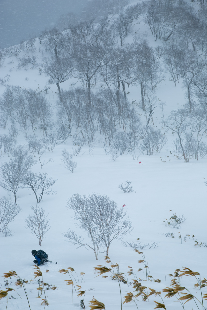 shiraoidake230140125-4497.jpg