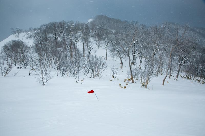 shiraoidake230140125-4500.jpg