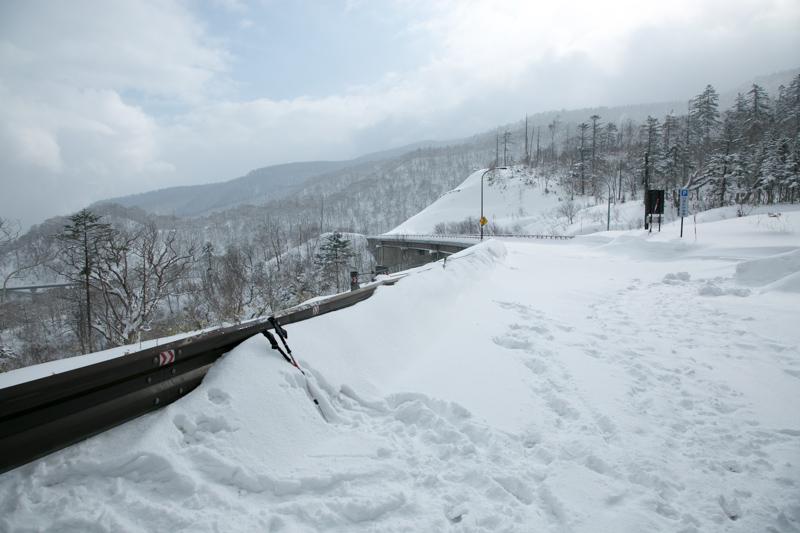 shiraoidake230140125-4519.jpg