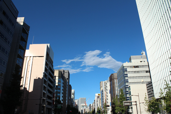 IMG_4088.jpg