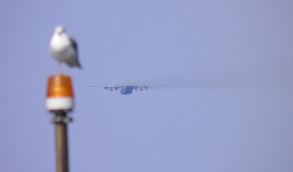 CH-130-3.jpg