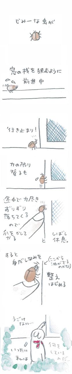 地味虫_001