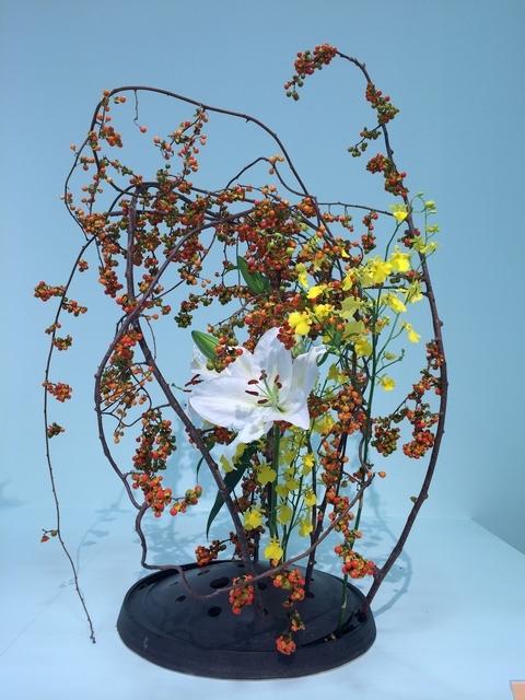 1輪だけ咲いたユリの花が印象的です