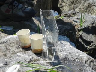 琵琶湖外来魚駆除釣り大会