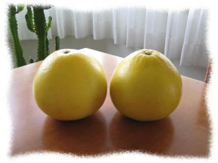 2013年6月柑橘2個