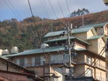 楽しく学べる人生という旅-koyanagi1