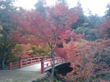 楽しく学べる人生という旅-miyajimasennjyoukaku