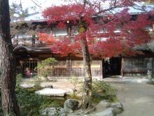 楽しく学べる人生という旅-miyajimaiwasou1