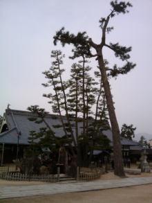 楽しく学べる人生という旅-miyajimadaiganji