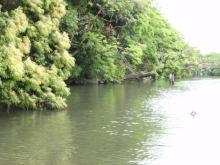 楽しく学べる人生という旅-horikawameguri1